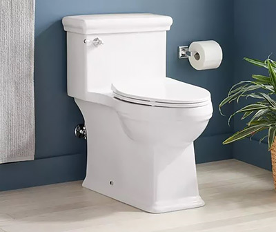 Signature Hardware Key West One-Piece Toilet