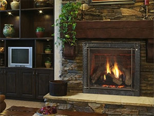 Heat & Glo Energy Pro Glas Fireplace