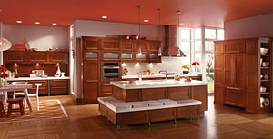 KraftMaid Contemporary and Dynamic Kitchen