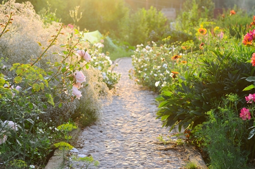 Money-saving tips for landscaping